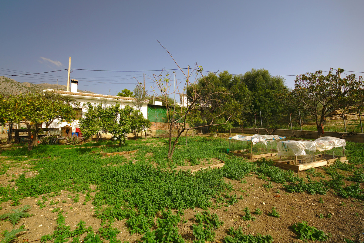 Urban plot in Mondron, (Periana) surrounded by nature. 20 minutes from the Montes de Malaga and abou,Spain