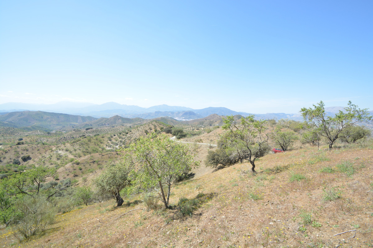 Land for sale in Alora