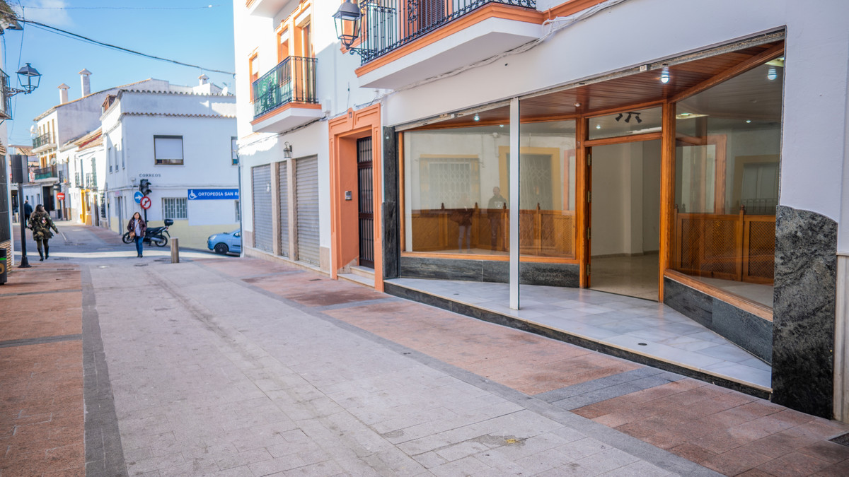 Commercial for sale in San Roque