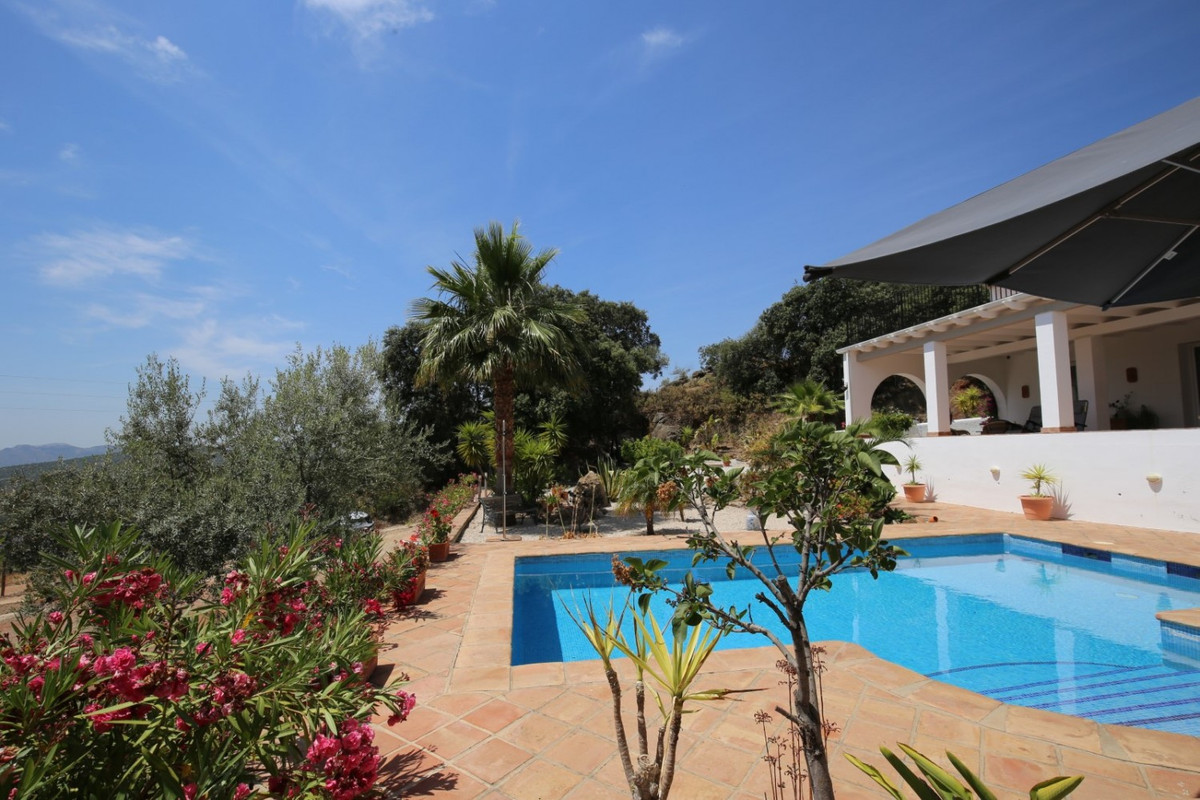 Fantastic villa near the town of Rio Gordo, entirely fenced and with electric access doors. The wall,Spain