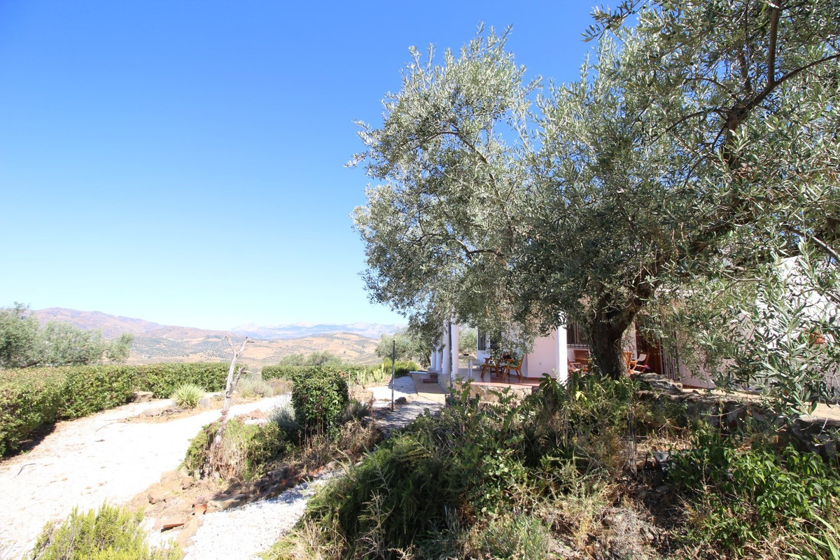 Finca / cortijo in the municipal area of La Vinuela  The property has a construction of 142 m2 on a ,Spain