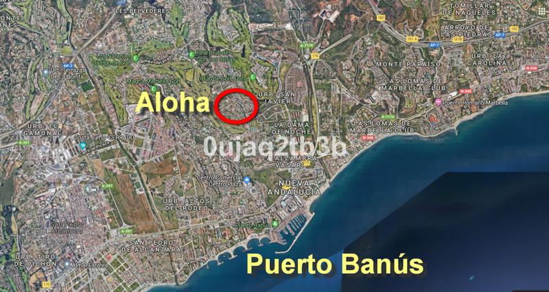 Plot - Aloha