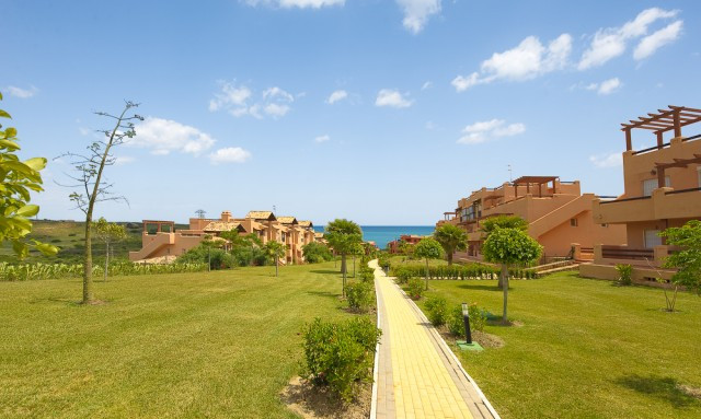 Apartment  Penthouse for sale   in Casares Playa