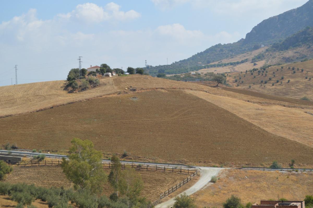Plot, Land  for sale    en Alora