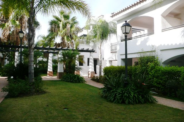Apartment  Ground Floor 																					for rent 																			 in San Pedro de Alcántara