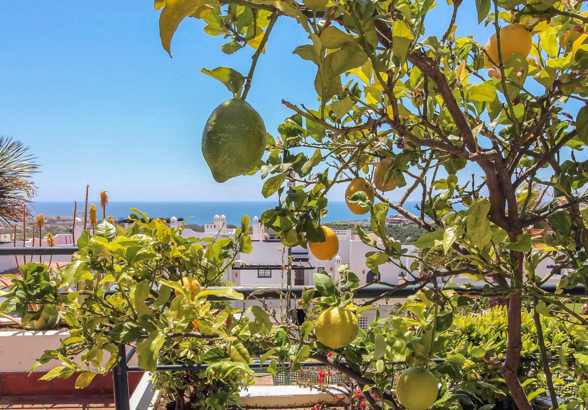 Ref:R3182644 Apartment - Middle Floor For Sale in Casares
