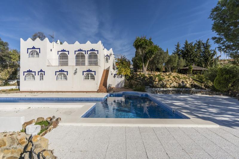 Villas In Casares 1