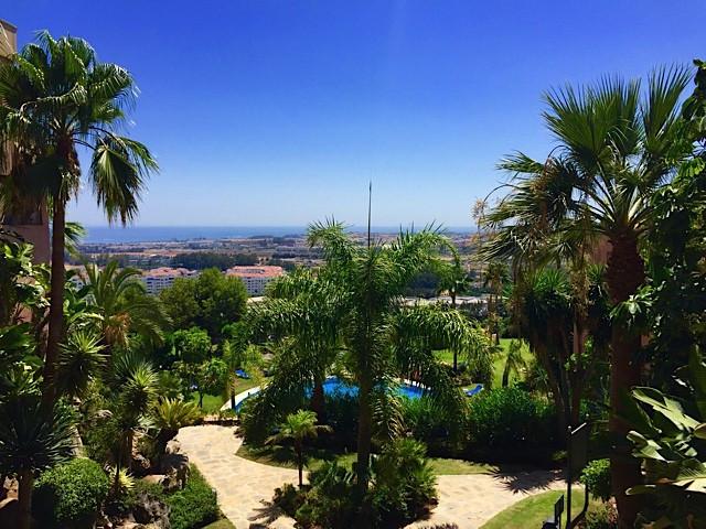 Marbella Banus Oficina en venta en Marbella – R3084688