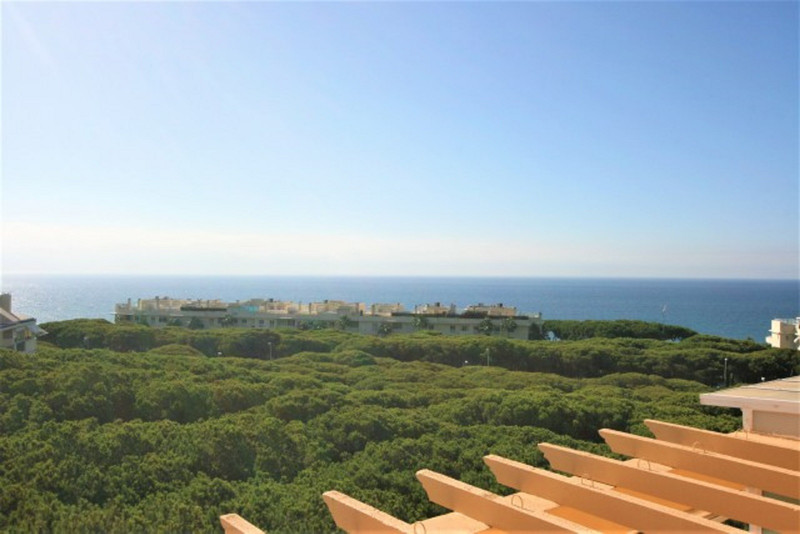 Penthouses In Mijas Costa 8