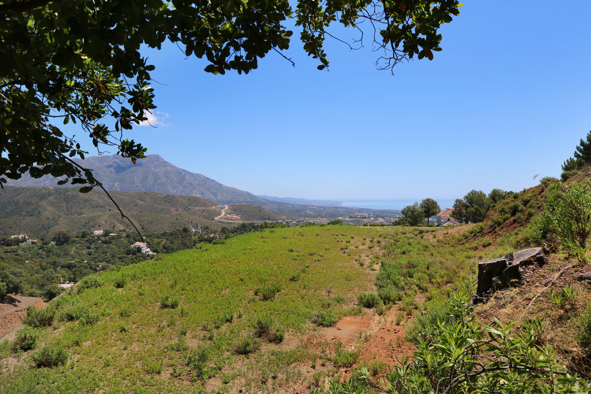 Plot/Land for sale in La Zagaleta, Costa del Sol