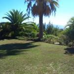 Residential Plot - Sierra Blanca - homeandhelp.com