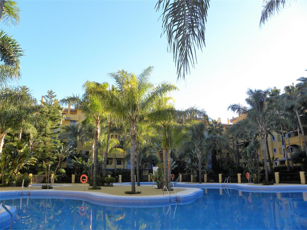 Lovely 3 bed ground floor apartment currently used as an office but easily converted back to a famil,Spain