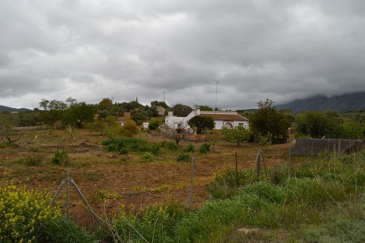 House in Antequera R3405532 21