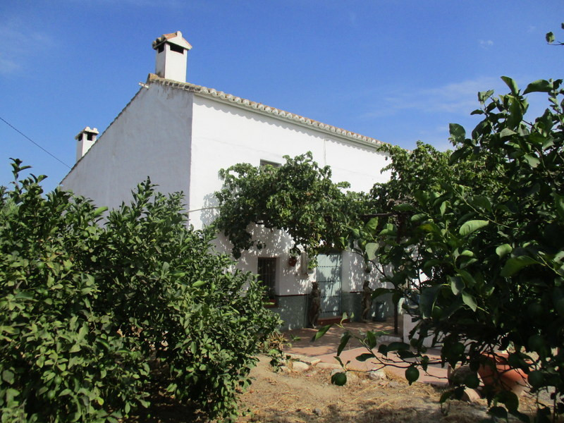 This substantial traditional Andalucian farmhouse has been tastefully and yet sympathetically refurb, Spain