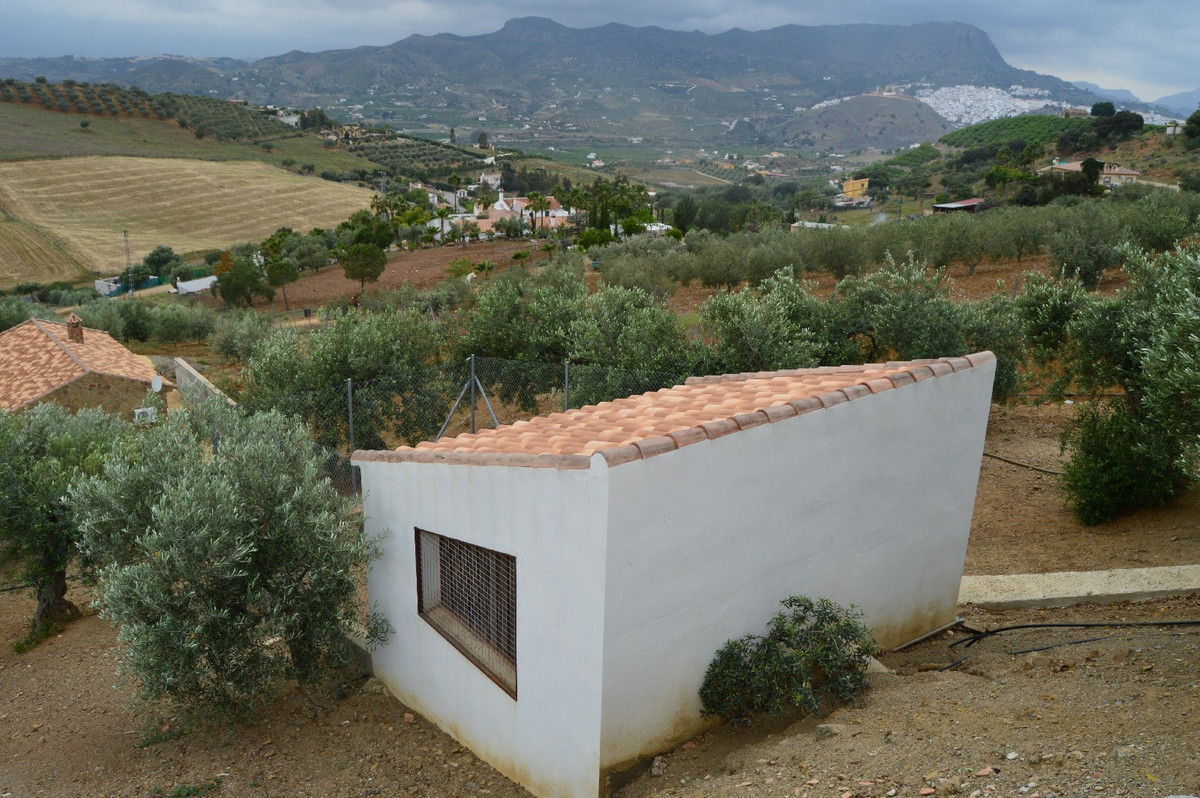 House in Alora R2664230 21
