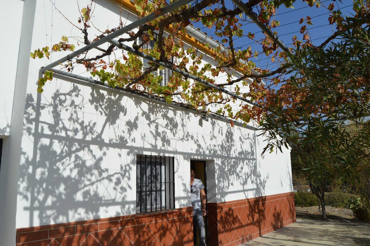 House in Alora R2792057 32