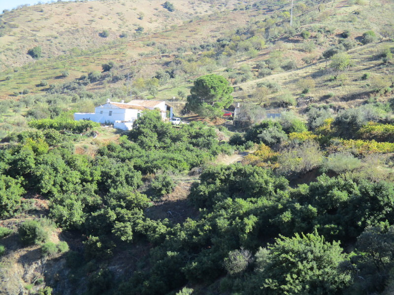 We are honoured to have been instructed to market this productive organic Andalucian farm located a ,Spain
