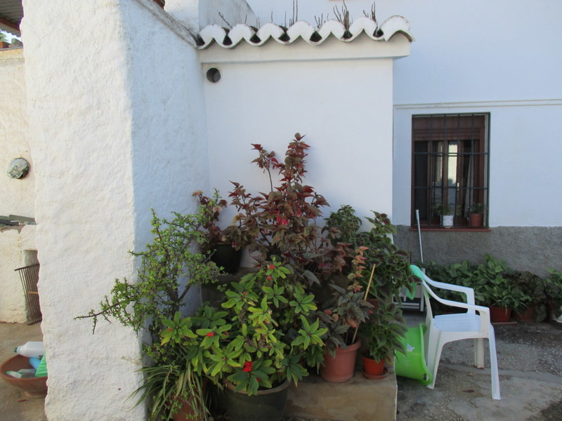 House in Alora R3291688 21