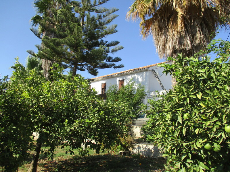 House in Alora R3291688 26