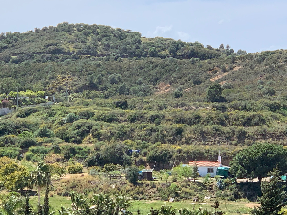 Residential Plot in El Padron