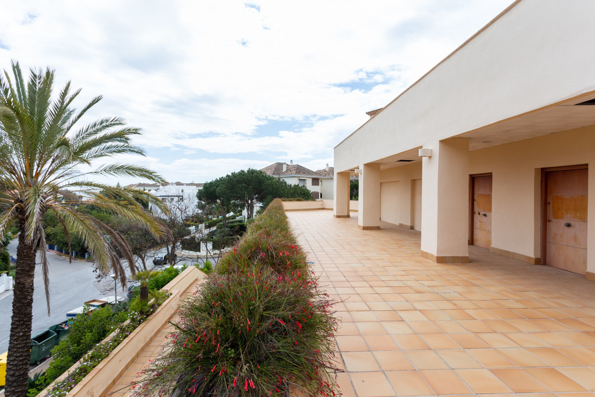 Business for sale in Elviria