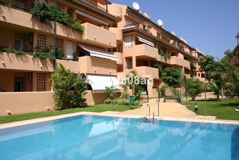 Property Las Chapas 13