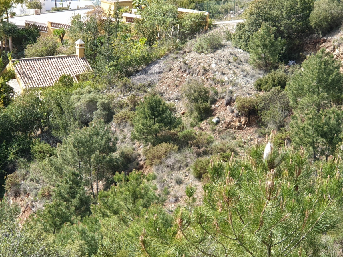 Residential Plot in El Madroñal