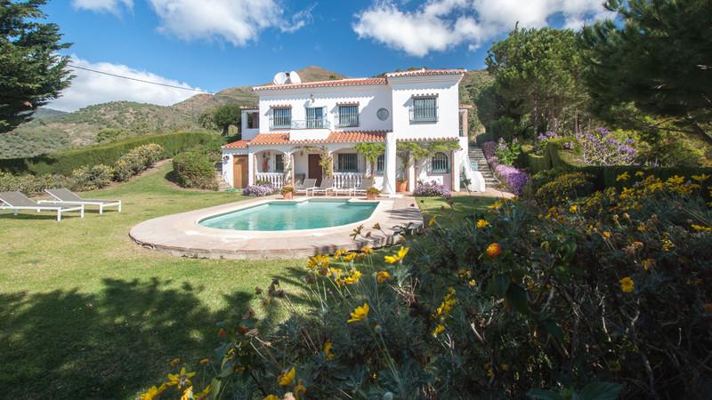 Villas In Casares 2
