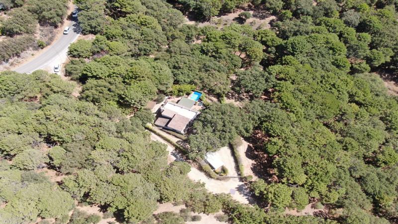 Villas In Casares 8