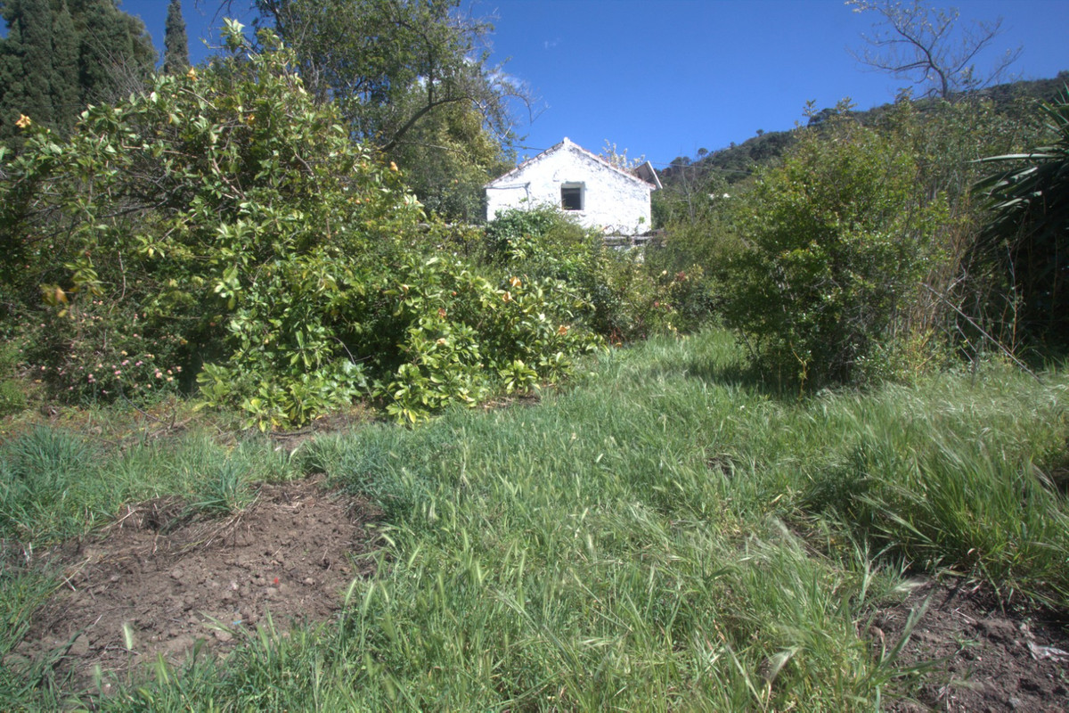 Land with Ruin in Casares R3442651