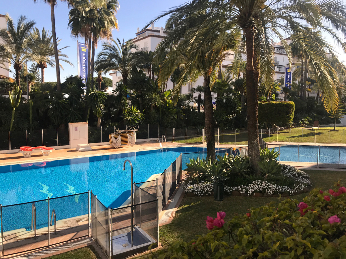 Apartment - Ground Floor for Rent in Puerto Banús