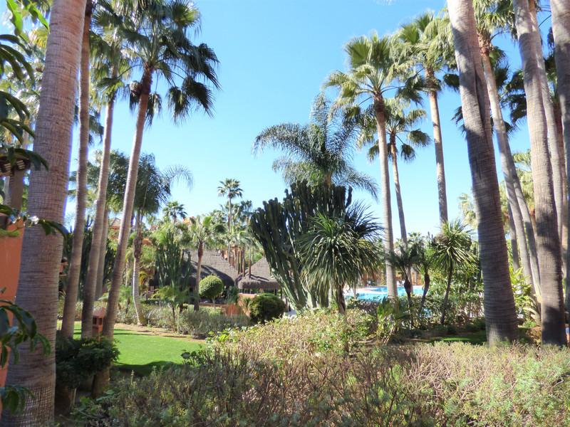 Marbella Banus Apartamento Planta Baja, Nueva Andalucía – R3622718