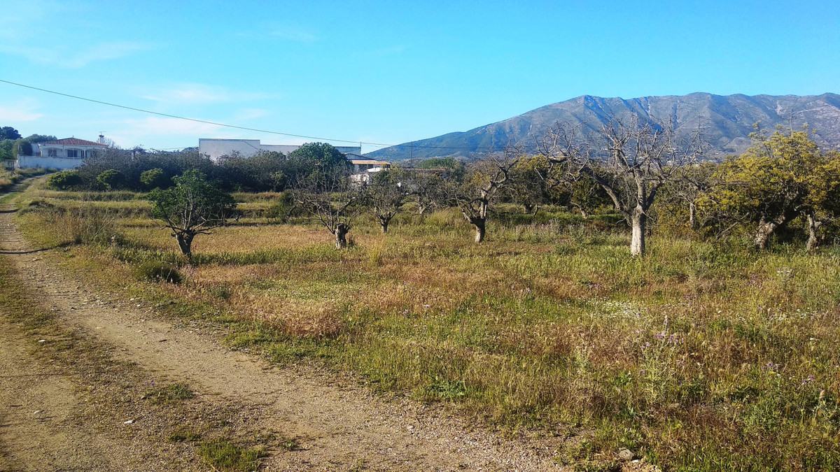Finca - Cortijo for sale in Mijas Golf