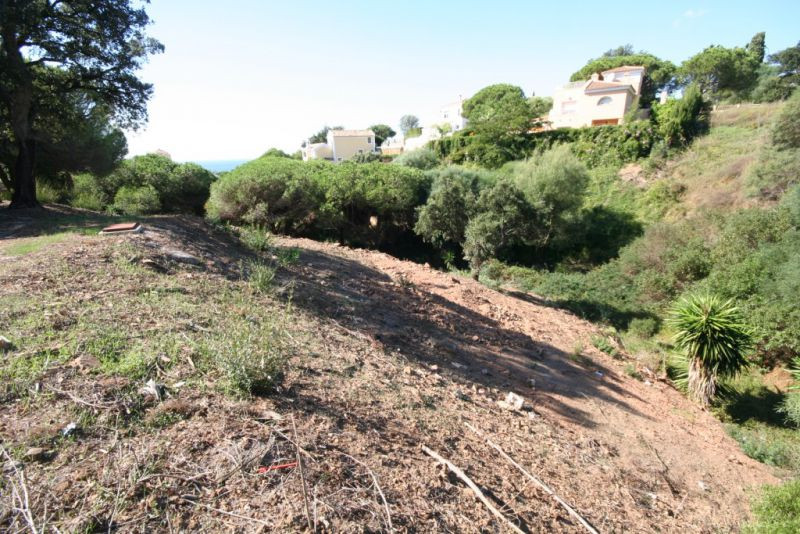 Great building plot in Elviria with basic project (no final project and no license) to build a beaut,Spain