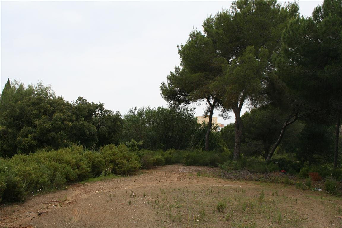 Residential Plot for sale in Hacienda Las Chapas
