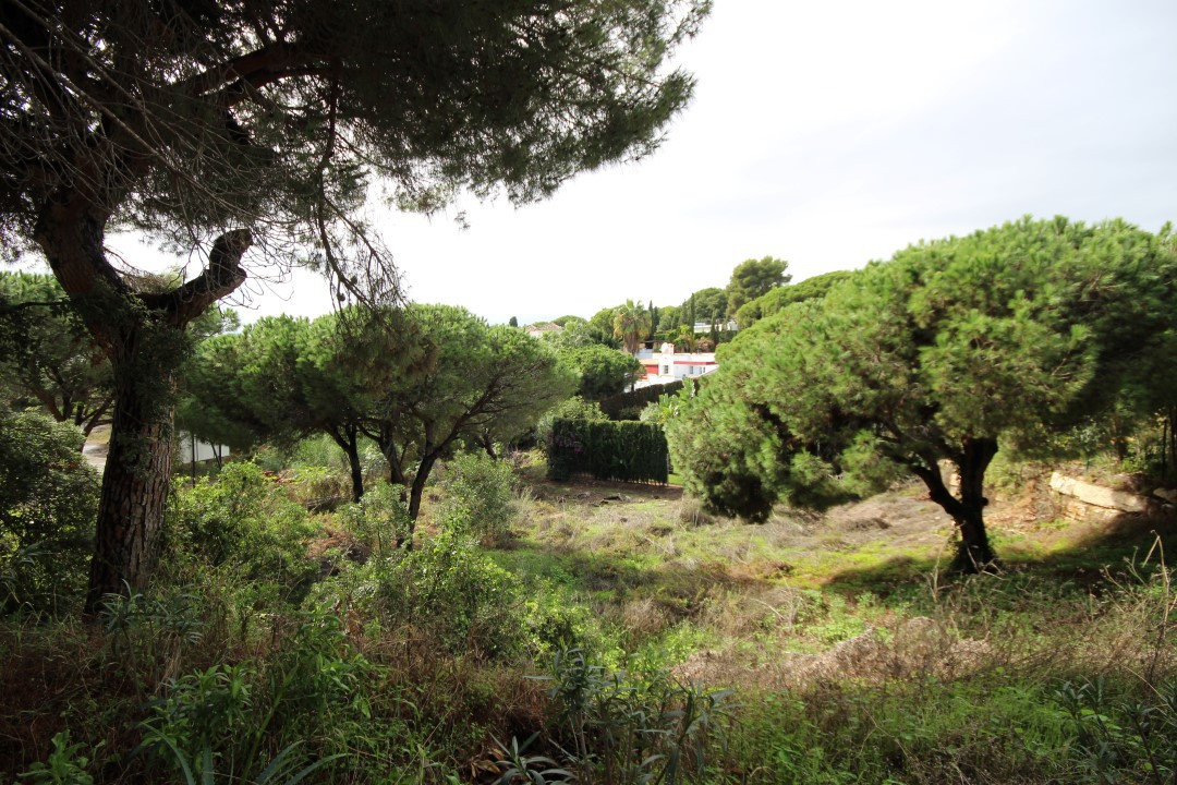 property for sale in Malaga