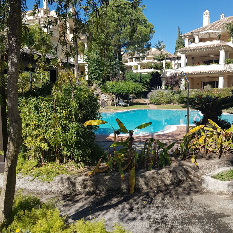 Immobilien Las Brisas 9