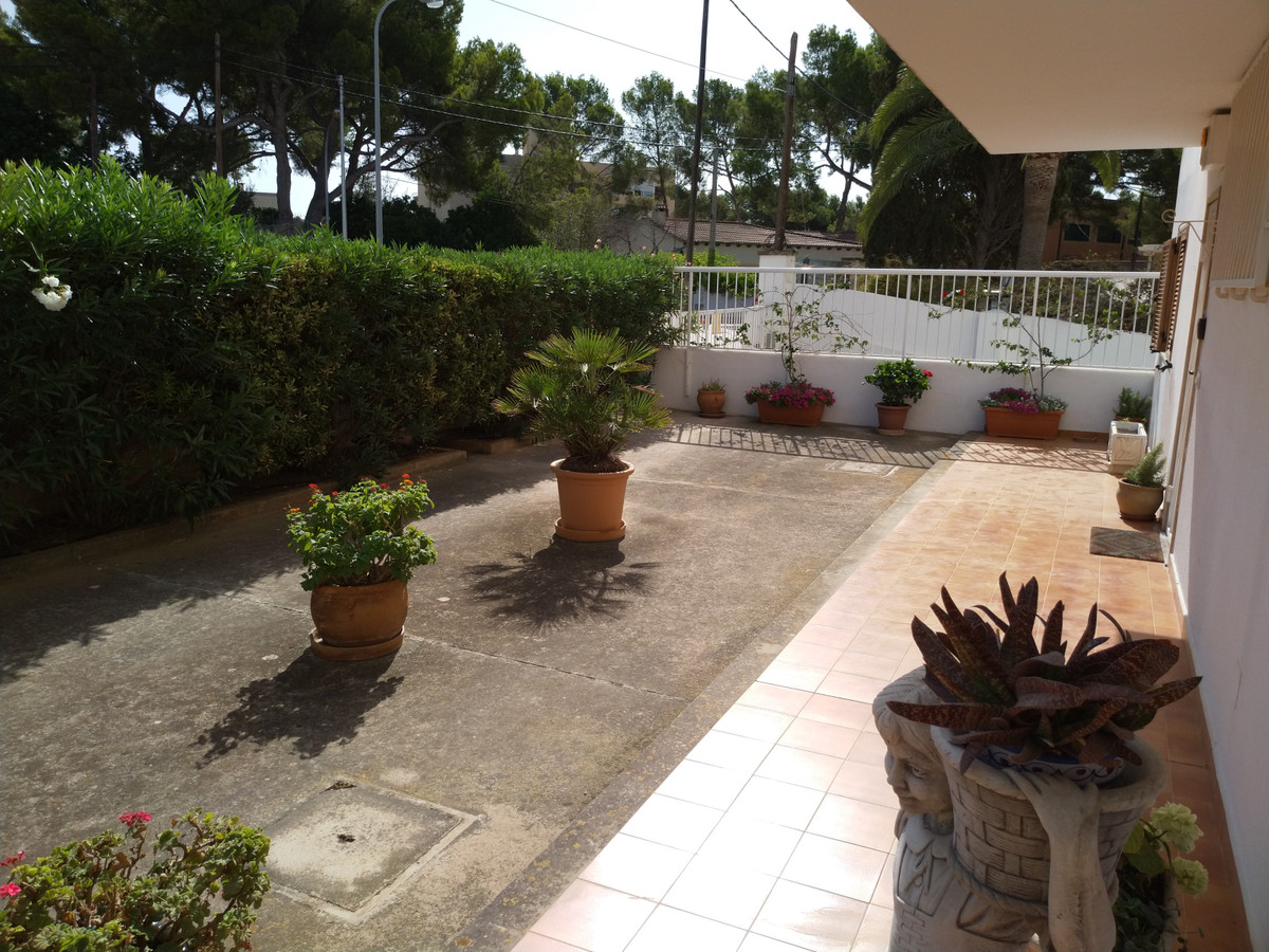 Apartamento Planta Baja en Portals Nous