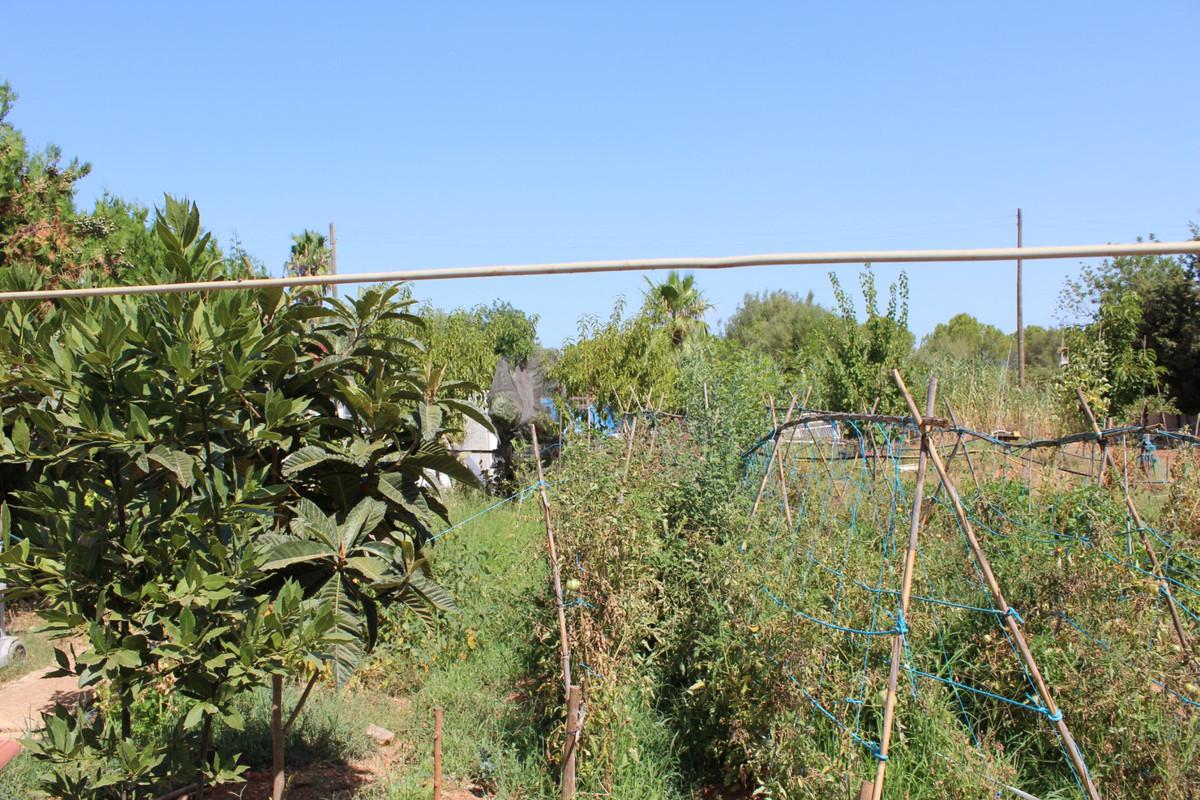 Terreno Rustico en Sencelles