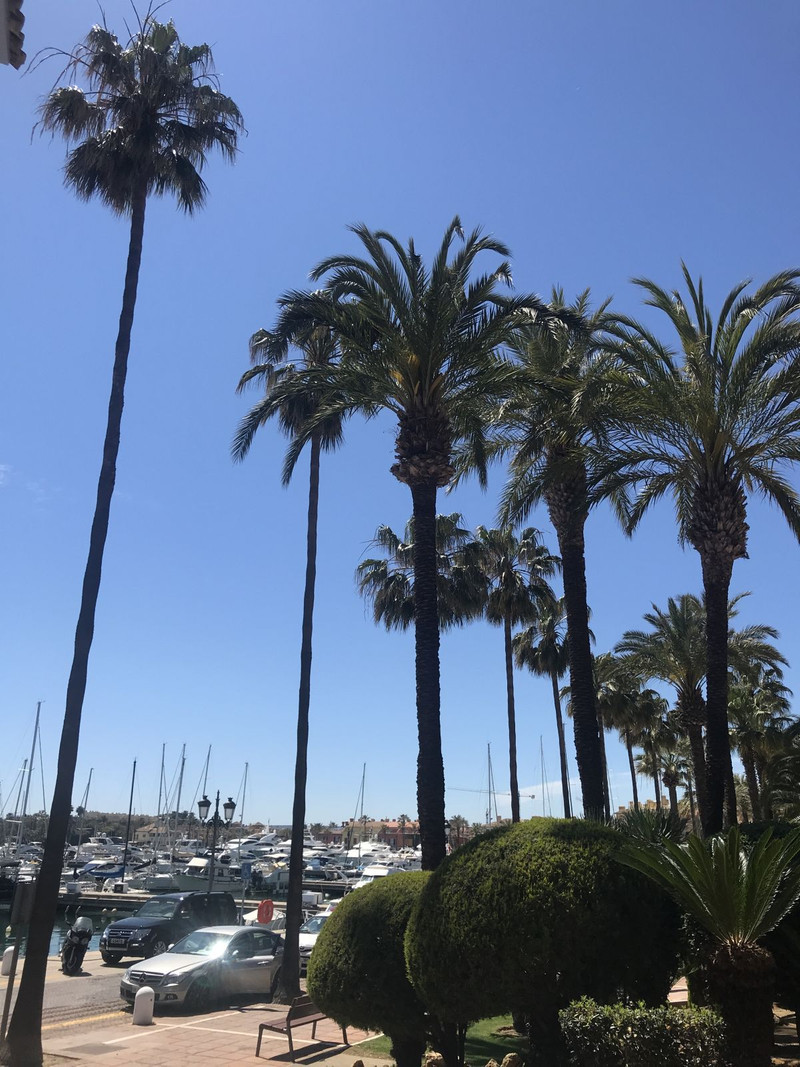 Middle Floor Apartment in Sotogrande for sale
