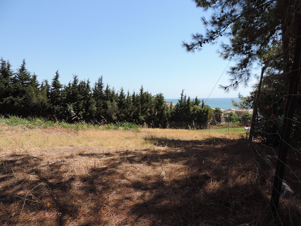 Residential Plot, Estepona, Costa del Sol. Garden/Plot 1500 m².  Setting : Country., Spain