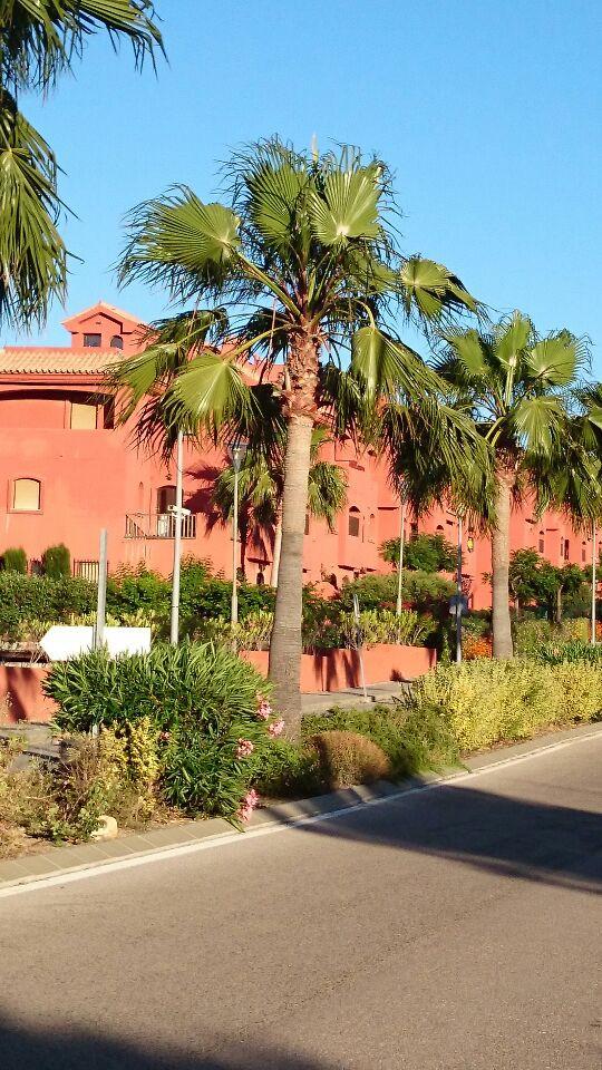 Townhouse - Estepona - R3171622 - mibgroup.es
