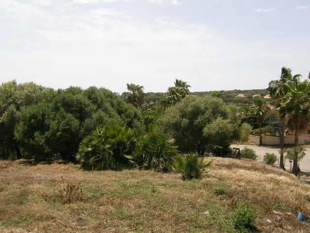 Sotogrande Alto: courner plot with permission to construct a detached villa., Spain