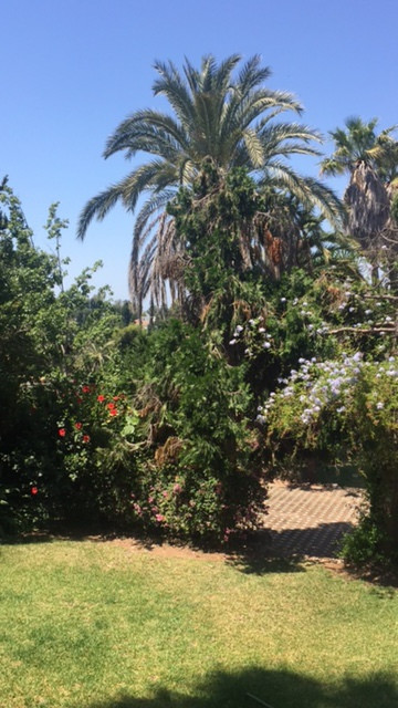 Residential Plot, The Golden Mile, Costa del Sol. Garden/Plot 4000 m2;.  Setting : Close To Port, Cl, Spain