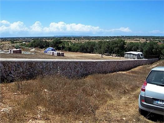 For sell  finca in Es Trenc of 14,100 mtrs.Cuenta with electricity of endesa, plans of the architect,Spain