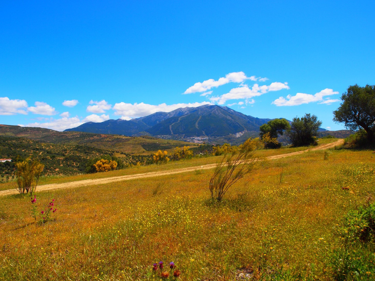 Beautiful plot with panoramic views of nature, to the lage of La Vinuela and the sea in Periana, Sou, Spain