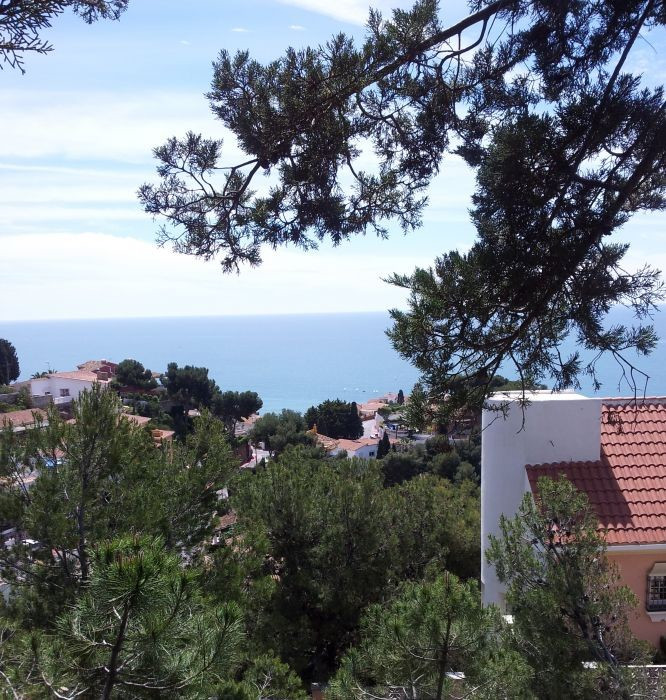 FOREST, MOUNTAIN AND SEA VIEWS, MINUTES  CLOSE   MALAGA DOWN TOWN  Sea views across the southern fro,Spain