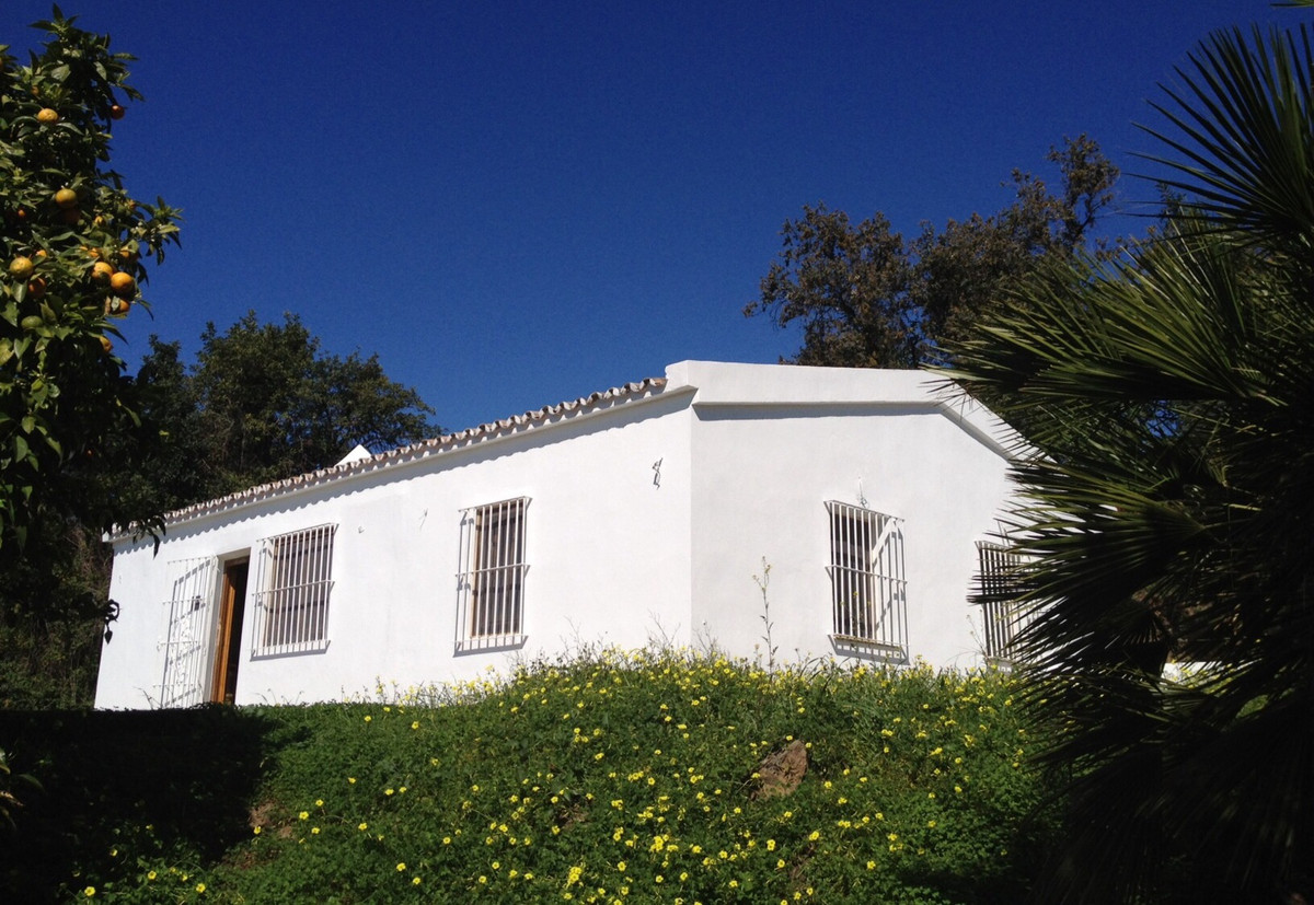 Finca for sale on the New Golden Mile, just a few minutes drive to the beach and to all amenities. I Spain