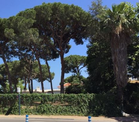 Fantastic plot for sale close to Marbella international university.  It has a total of 490 square me,Spain