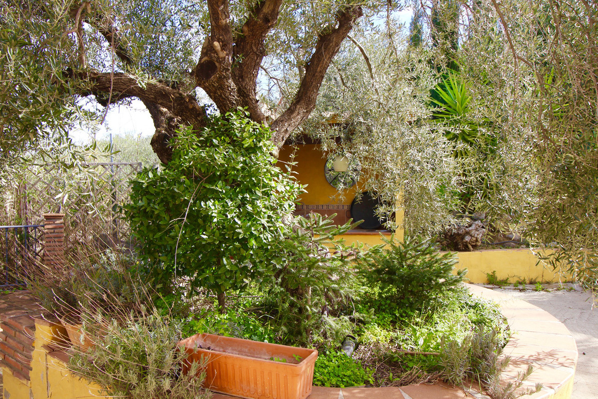 At the foot of Sierra de las Nieves 17 km from Marbella towards the inland is this exquisite place. ,Spain